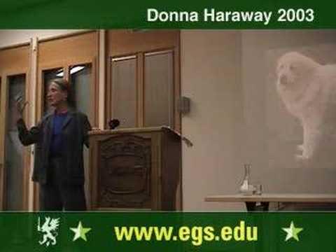 Donna Haraway. Companion Species Manifesto Lecture 2003 6/10