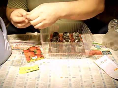 Капельный полив своими руками из пластиковых труб фото 538