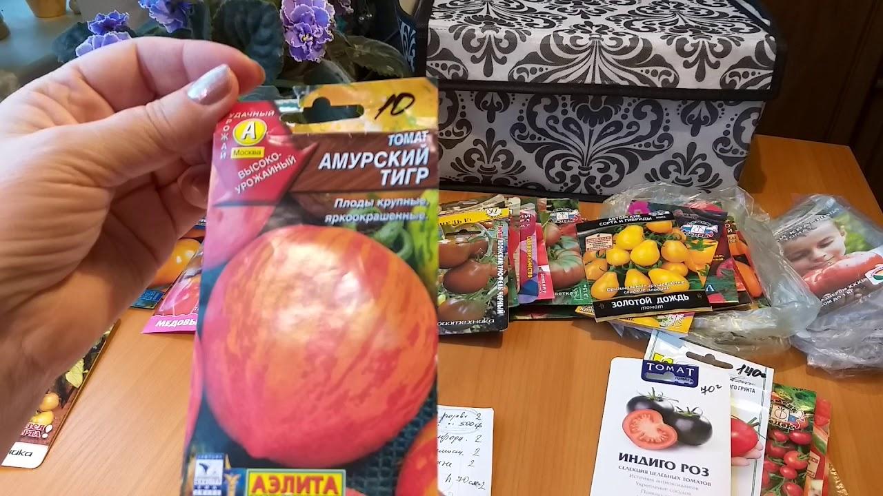 Какие томаты больше не посажу - неудачи этого года