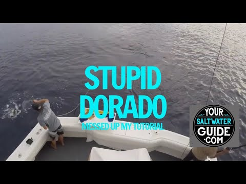 How To Read A Fish Finder Boat Sonar (Stupid Dorado Messed Up Tutorial)