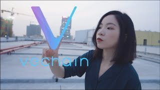 VeChain and DNV GL Introduce Bright Code Project at China International Import Expo 2018
