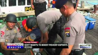 Indonesian Creates New Government Body To Oversee Illegal Fishing Crackdown