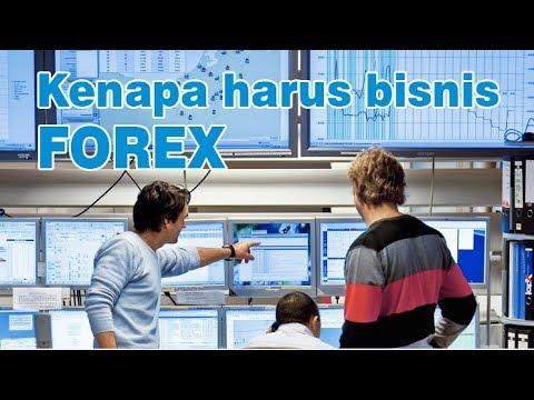 apakah bisa kaya dari forex