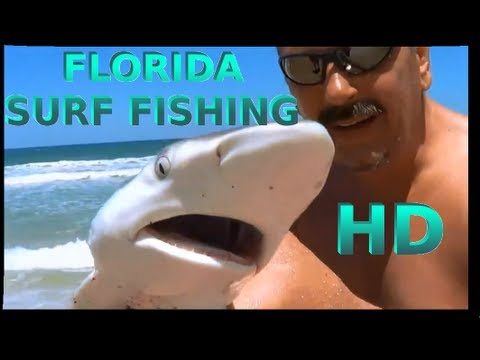 SURF FISHING FLORIDA POMPANO , SHARK AND WHITING