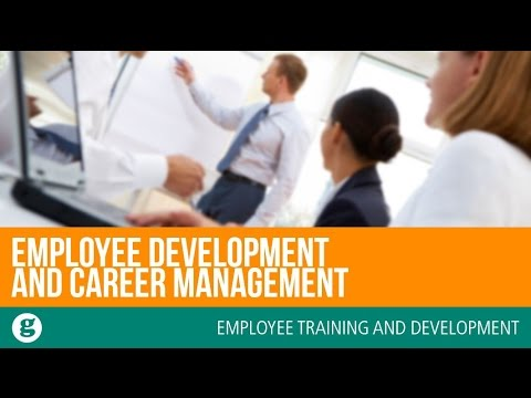 Employee Development and Career Management