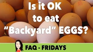 FAQ Friday: Is it OK for Vegans to Eat Eggs from Backyard Chickens?