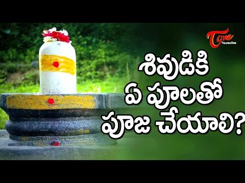 Maha Shivaratri  || Which Flowers To Be Used For Lord Shiva Pooja ? || #MahaShivaratri
