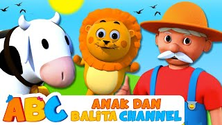Lagu Anak Anak   Om MacDonald Punya Ternak   Anak Dan Balita Channel