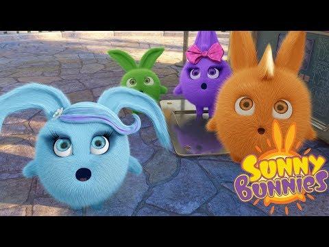 Cartoons for Children | SUNNY BUNNIES SURPRISE SURPRISE | Funny Cartoons For Children