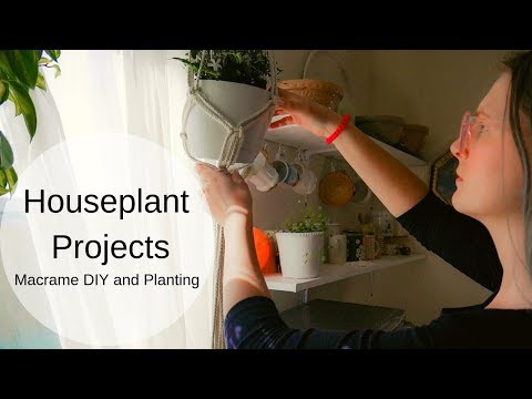 Houseplant Projects | Making Macrame Hangers, Planting, Fertilizing, And The Full Moon