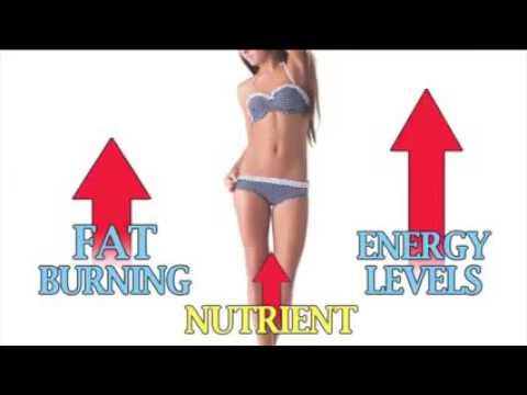 2 week diet plan for a bodybuilding
