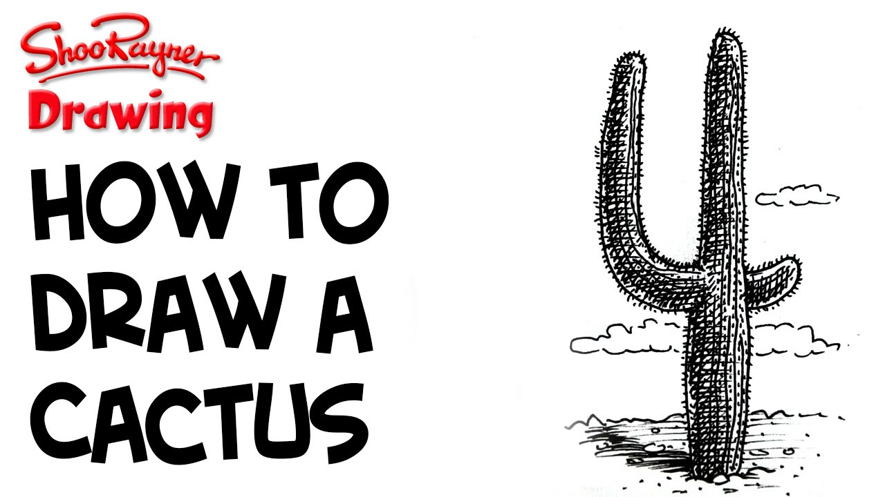how to draw a desert cactus youtube. Black Bedroom Furniture Sets. Home Design Ideas