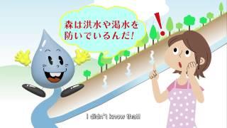水道ニュース51号PR映像【東京水のふるさと「水道水源林」】