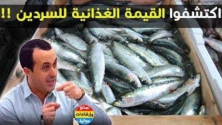 اكتشفوا القيمة الغذائية والسعرات الحرارية لسمك السردين !! منبع للبروتين والاوميغا 3 مع نبيل العياشي✔ thumbnail
