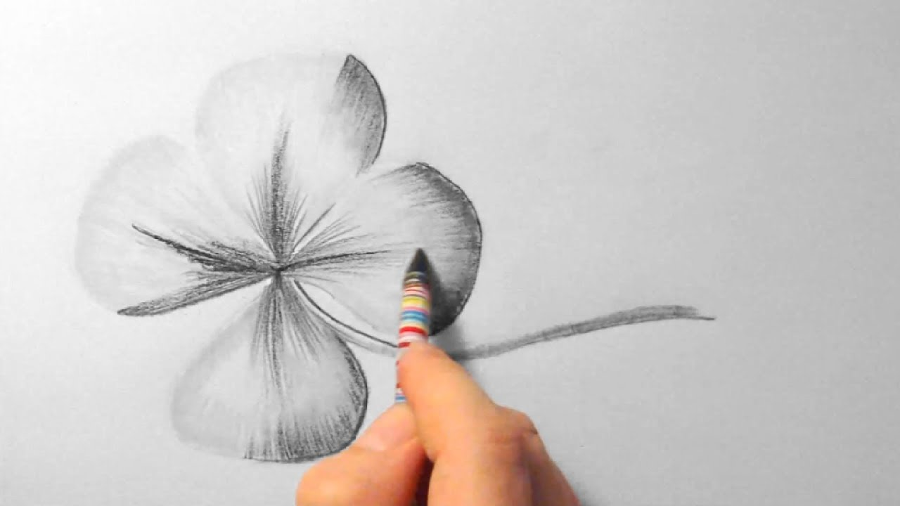 Klee Zeichnen Im Zeitraffer Clover Drawing In Fast Motion Hd