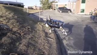 Когда ты собака-робот и тебя никто не любит