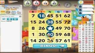 How to play BINGO Blitz