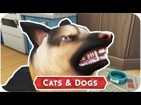 DOG FIGHT! 🐱🐶 THE SIMS 4 // CATS AND DOGS — PART 15