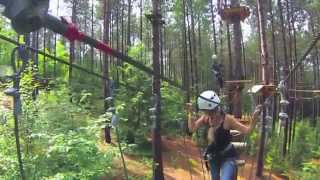 TreeTop trekking Ganaraska Forest Woodpecker