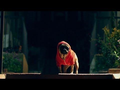 Eminem - Rap God (Unofficial Pug Version)