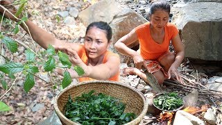 Find Sweet vegetable leaves & fried on clay for food - Cooking Sweet vegetable eating delicious #64