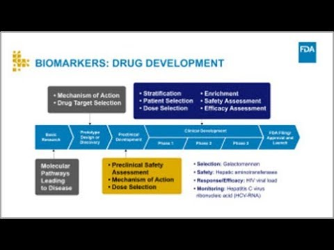 How Biomarkers Can Improve the Drug Development Process