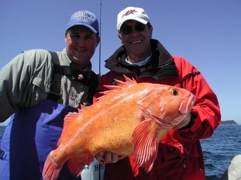 "Ocean Bottom Fishing! ""Angler's Xperience Episode 29"""