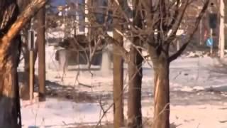 Война видео Украина Донбасс  2015съёмка жесткого Боя в Донецком аеропорту