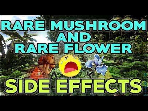 Ark Survival Evolved Rare Mushroom And Rare Flower Side Effects