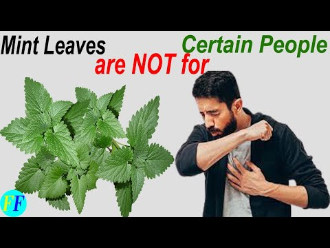 Do You Know Mint Leaves are Not For Certain People Health Benefits and Uses Mint Tea Benefits