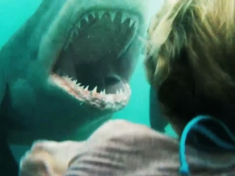 Shark Swarm is listed (or ranked) 51 on the list The Best Syfy Original Movies