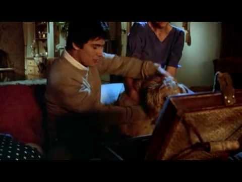 Gremlins (1984) - Movie Trailer