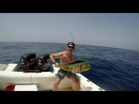 Fujairah Fishing (Mahi Mayhem) - Jigging, Popping, Stickbaits, Trawling.