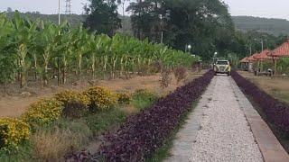 Fressz Pikiran Main Ke Kebun #mbrk Seluas Hektaran