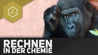 Rechnen in der Chemie - Stoffmenge, Konzentration, etc. einfach erklärt!