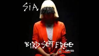 Video Sia - Bird Set Free (David Harry Remix) download MP3, 3GP, MP4, WEBM, AVI, FLV Juli 2018
