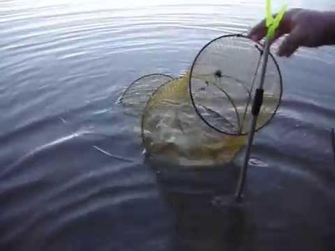 Рыбалка на Озернинском водохранилище