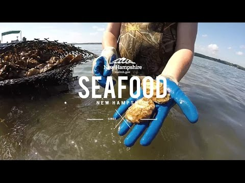 Keep It Local: New Hampshire's Freshest Seafood