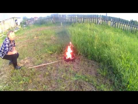 Выжигаем земляных пчел//We burn out earth bees