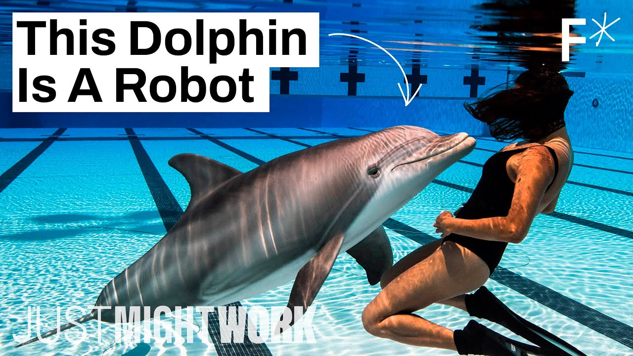How robots could end animal captivity in zoos and  marine parks   Just Might Work