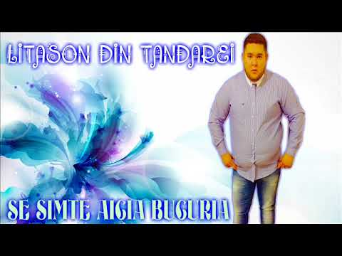 Litason Din Tandarei Se Simte Aicia Bucuria (OFFICIAL VIDEO) 2017