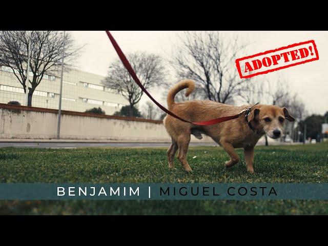 Eu sou o BENJAMIM