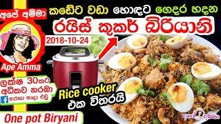 අප අමමග පහසවන හදන චකන බරයන One pot biryani (ENG sub) by Apé Amma