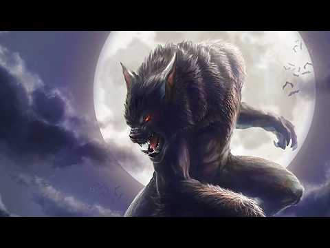 Why Are Werewolves So Popular? The History Of The Werewolf Legend