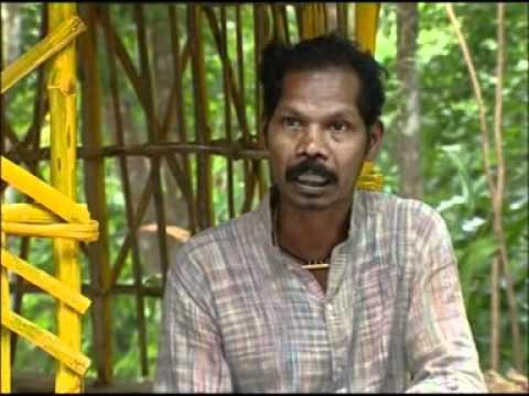 Film on Kanikkar Tribe of Kerala