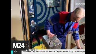 в общественных местах столицы усилена дезинфекция из-за коронавируса - Москва 24