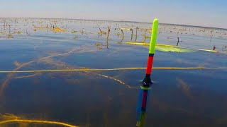 Рыбалка из детства Ловля карася на поплавочную удочку В ГУСТОЙ ТРАВЕ