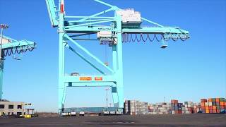 Gambar cover #Solutions #Howwedoit Sarens SPMTs take on 1700 tonne shipping cranes!