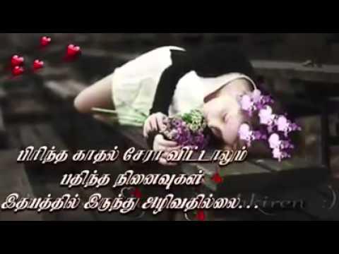 Tamil Love Feeling Songs Youtube