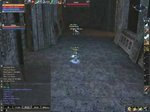 Lineage II - Elemental Summoner And Prophet In Cruma Tower